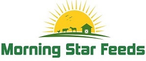 Morning Star Feeds (Pty) Ltd